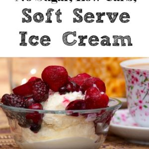 4 Ingredient, No Sugar, Low Carb Soft Serve Ice Cream