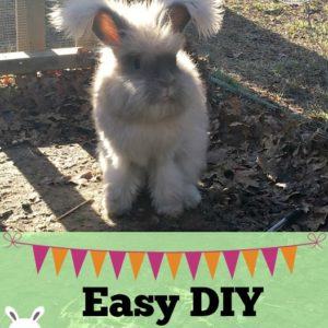 Easy DIY Rabbit Toys