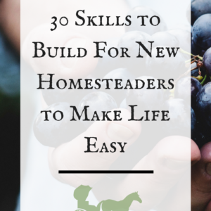 30 Skills to Build for New Homesteaders