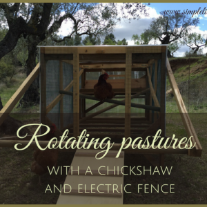 Safety First: Free-Ranging Chickens with Electric Netting and a Mobile Coop