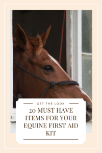 Your Ultimate Equine First Aid Kit Checklist