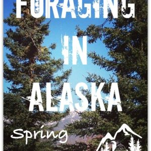 Foraging in Alaska – Spring