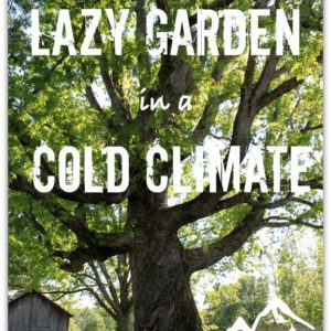 How to have a Lazy Garden in a Cold Climate