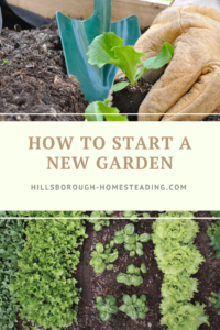 How to Start a New Garden the Right Way