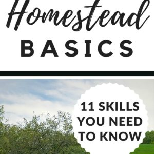 Homestead Basics: 11 Skills You Need To Know