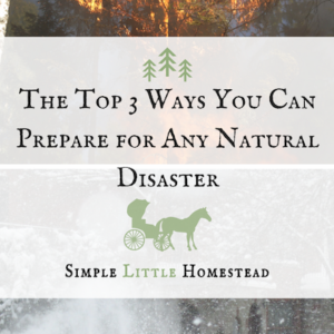 3 Ways You Can Prepare for Any Natural Disaster