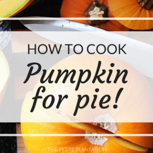 How to cook a pumpkin for pie!