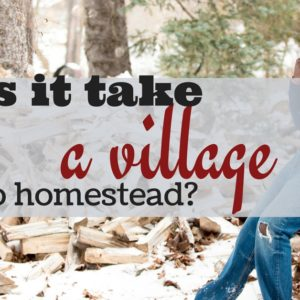 Does It Take A Village To Homestead?