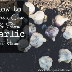 Guide to Homegrown Garlic: Grow, Cure & Store Garlic at Home