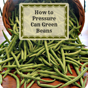 How to Pressure Can Green Beans