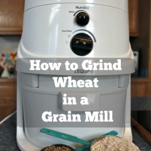 How to Grind Wheat in a Grain Mill