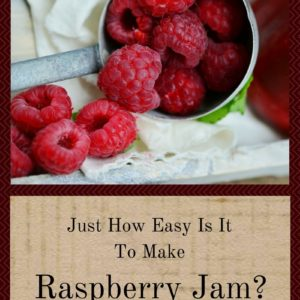 Just How Easy Is It To Make Raspberry Jam?