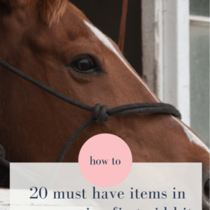 20 Must Have's For Your Horse First Aid Kit
