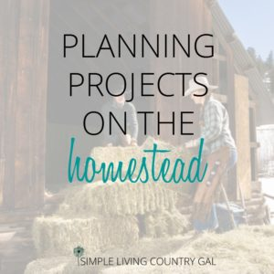 Planning For Projects On The Homestead