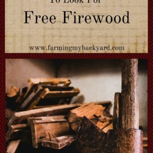 10 Places To Look For Free Firewood