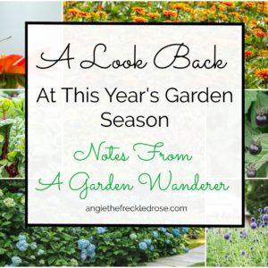 Notes From A Garden Wanderer