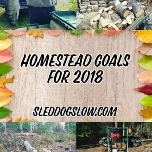 Homestead Goals For 2018