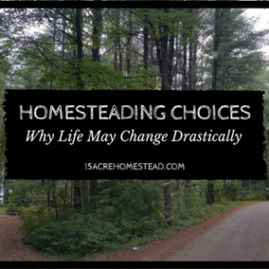 Homesteading Choices: Why My Life May Drastically Change Soon