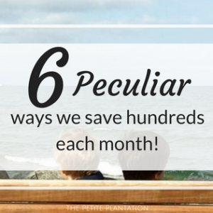 6 Peculiar Ways we save hundreds on the homestead, EVERY month!