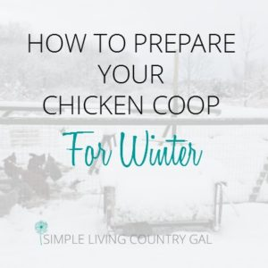 How to Prepared You Chicken Coop for Winter