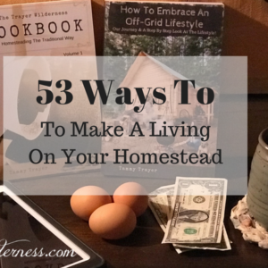 53 Ways To Make An Income On Your Homestead