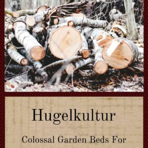 Hugelkultur: Colossal Garden Beds For Remarkable Results