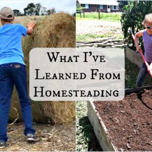What I've Learned From Homesteading