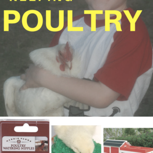 Getting Started with Poultry