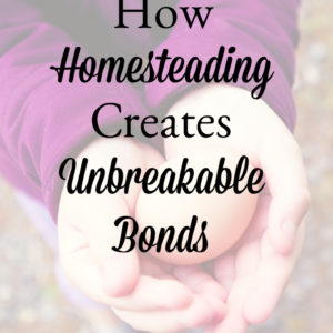 How Homesteading Creates Unbreakable Bonds