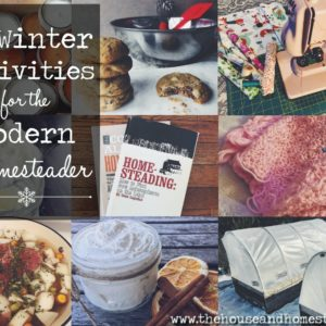 13 Winter Homesteading Activities to Keep you Productive until Spring!