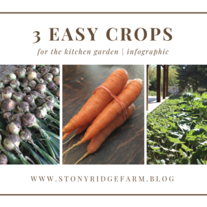 3 Easy Crops for the Kitchen Garden