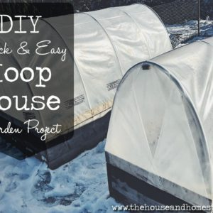 Quick & Easy DIY Hoop House