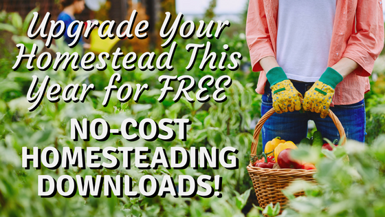Upgrade your homestead this year for FREE with these no-cost Homesteading downloads and resources!