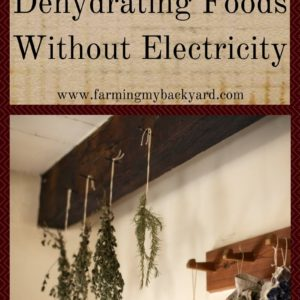 Here Are The Fundamentals Of Dehydrating Foods Without Electricity