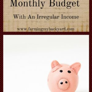 How To Have a Monthly Budget With An Irregular Income