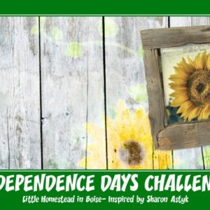 How I Got Started With The Independence Days Challenge