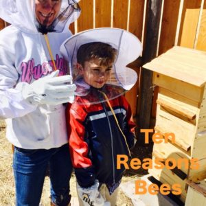 Ten Reasons That Bees Are Amazing Farm Animals