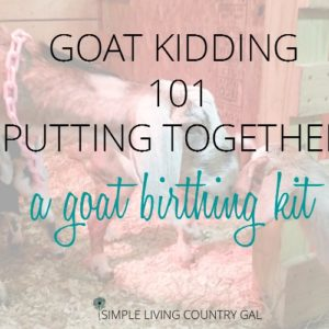 How to set up a Goat Birthing Kit