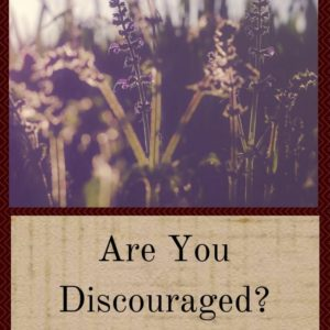 Are You Discouraged? Homesteading Can Be Tough!