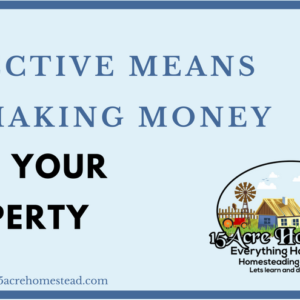Effective Means of Making Money With Your Land