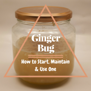 How to Start, Maintain & Use A Ginger Bug For Fermented Sodas