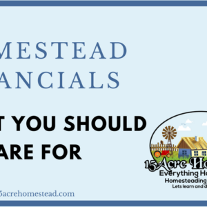 Homestead Financials: What You Should Prepare For