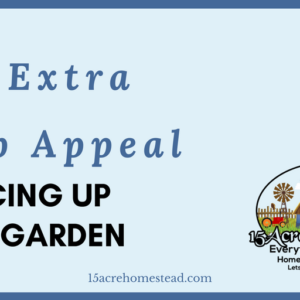 Add Extra Curb Appeal Sprucing Up Your Garden