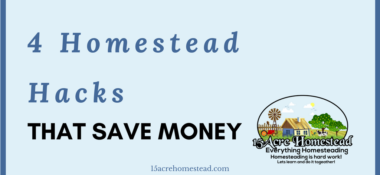 4 Homestead Hacks That Save You Money