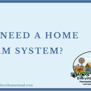 Do I Need A Home Alarm System?