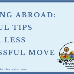 Moving Abroad: Useful Tips For A Less Stressful Move