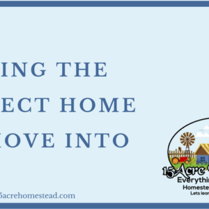 Finding The Perfect Home To Move Into