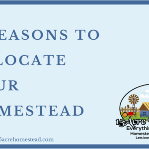 4 Reasons To Relocate Your Homestead