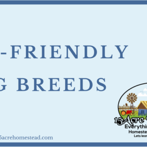 Kid Friendly Dog Breeds