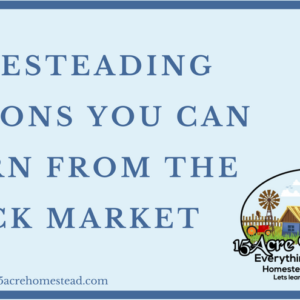 Homesteading Lessons You Can Learn From The Stock Market